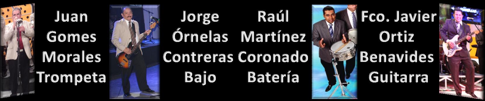 Integrantes 2014